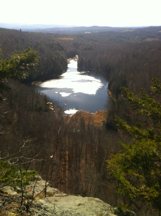 Hawkins Pond from above