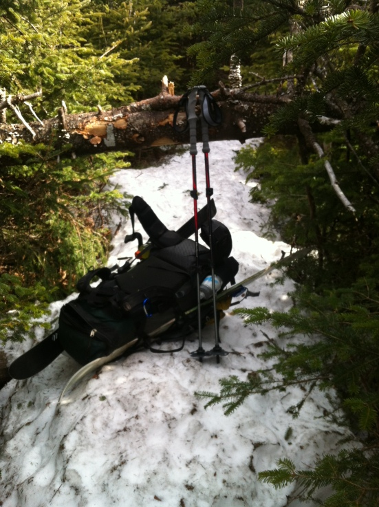 Fallen Trees over the trail prove more complicated with a large pack including long skis!